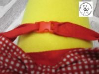 The Posh dog clothing company bow tie red gingham 03