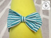 The Posh dog clothing company bow tie green stripe 01