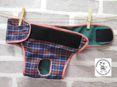 the posh dog clothing company pants blue tartan green 03