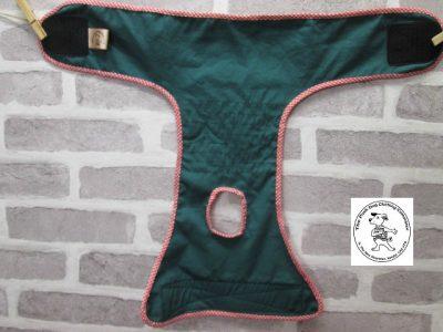 the posh dog clothing company pants blue tartan green 04