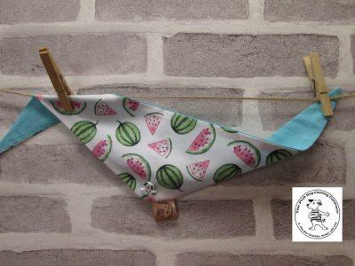 the posh dog clothing company watermelon blue 01