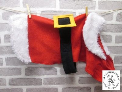 the posh dog clothing company christmas coat santa 04