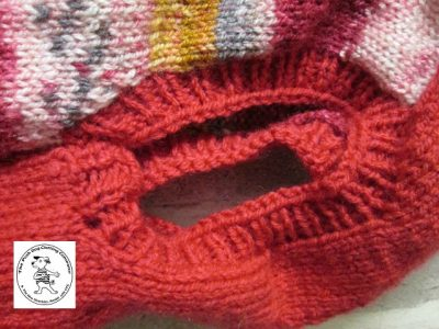 the posh dog clothing company jumpers stripes reds gold 3